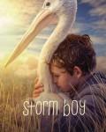دانلود فیلم Storm Boy 2019 با دوبله فارسی