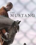 دانلود فیلم The Mustang 2019 با دوبله فارسی