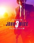 دانلود فیلم John Wick: Chapter 3 – Parabellum 2019 با دوبله فارسی