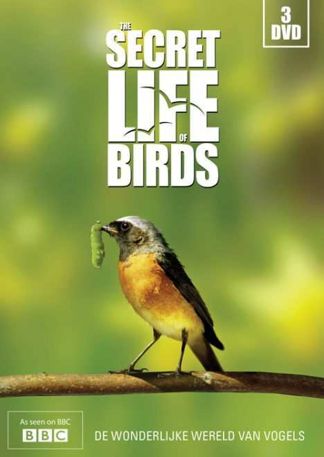 secret-life-of-birds-dvd-cover