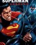 Superman-Unbound-2013