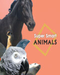 Super-Smart-Animals