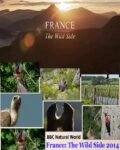 BBC-Natural-World-France-The-Wild-Side-2014